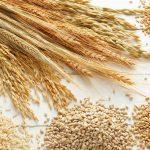 کاربرد گاز نیتروژن در دانه های خوراکی